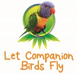 All about Companion Birds!