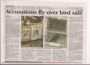 bird lover article mornington news 8 july 20140002