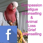 Compassion Fatigue & Animal Loss Counselling