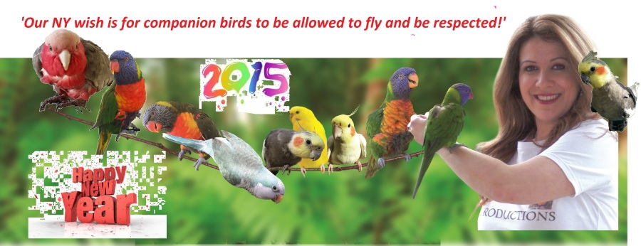 """'Because Birds were Born to Fly"""""""