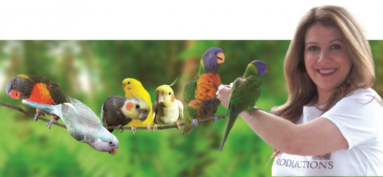 cropped-parrot-prod-image-birds-and-paris-crop-for-email2.jpg