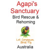 Agapi's Sanctuary- Rescue, Rehoming, Resort